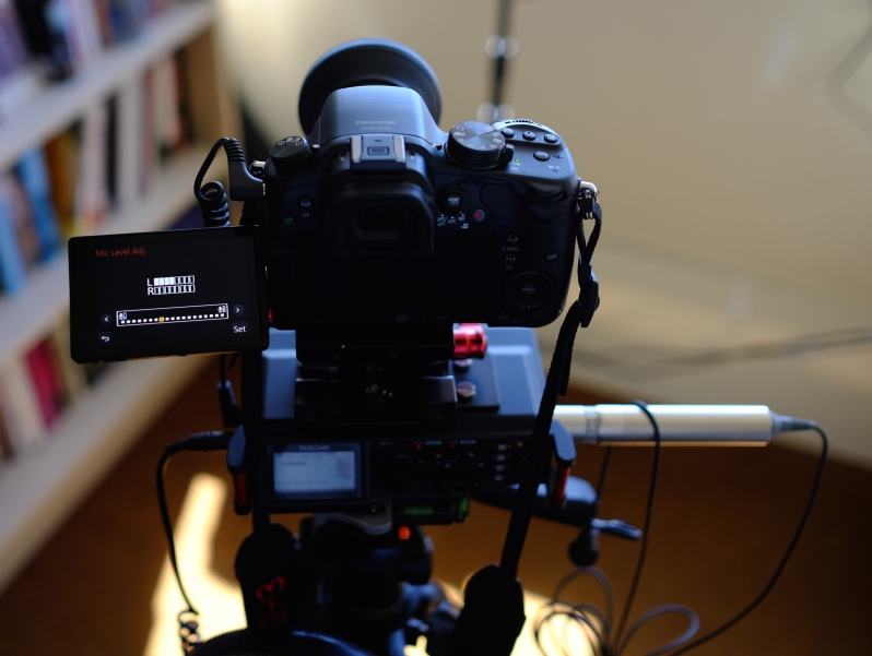 Adjusting your audio on the GH3